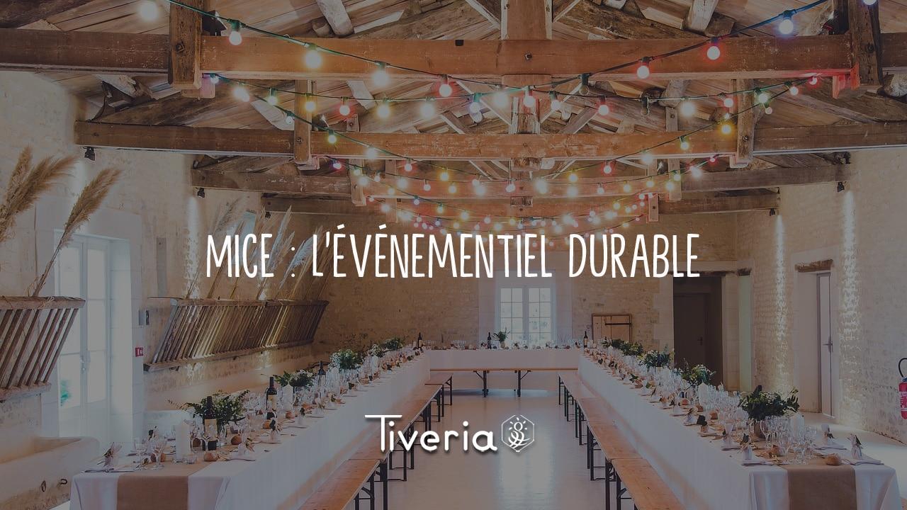 Template_blog-mice